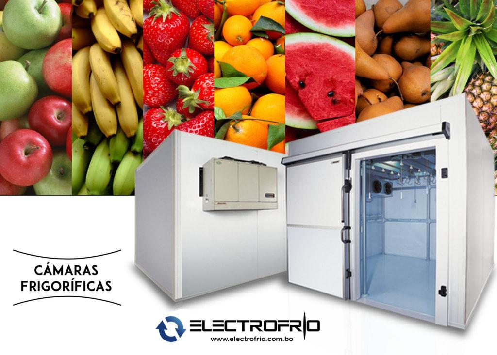 Electrofrío - Cámaras frigoríficas para la conservación de frutas 2