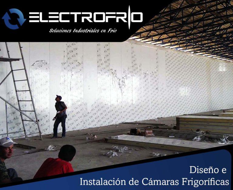 Electrofrío - Diseño e instalación de cámaras frigoríficas 8